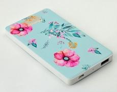 Portable battery